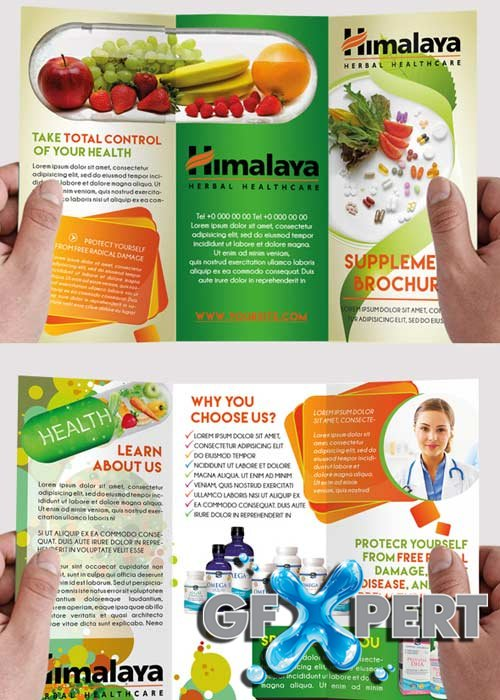 Free Health Supplement Premium TriFold Psd Brochure Template Download