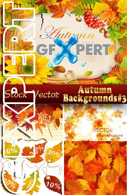Autumn backgrounds #3 - Stock Vector