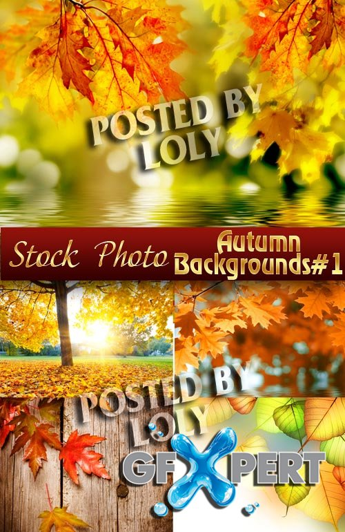 Autumn backgrounds #1 - Stock Photo