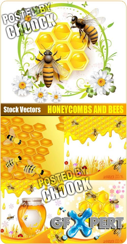 Honeycombs and bees - Stock Vector