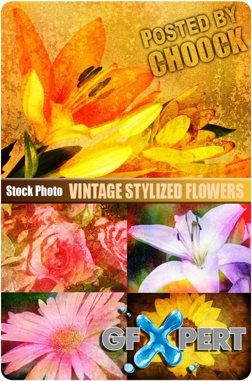 Vintage stylized flowers - Stock Photo