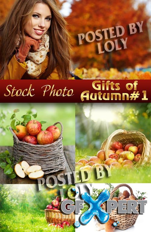 Gifts of Autumn #1 - Stock Photo