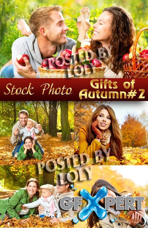 Gifts of Autumn #2 - Stock Photo
