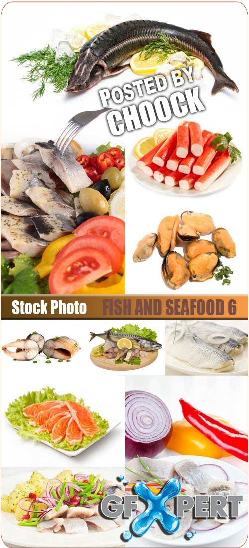 Fish and seafood 6 - Stock Photo