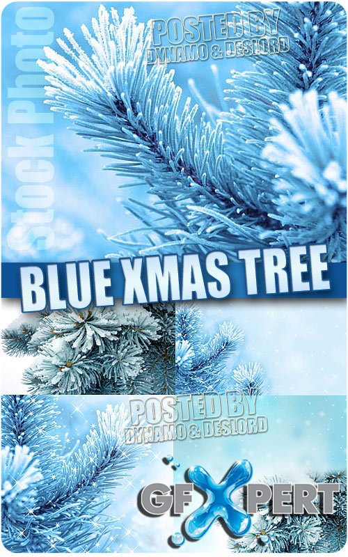 Blue xmas tree - UHQ Stock Photo
