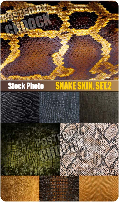 Snake skin. Set.2 - Stock Photo