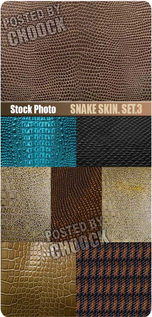 Snake skin. Set.3 - Stock Photo
