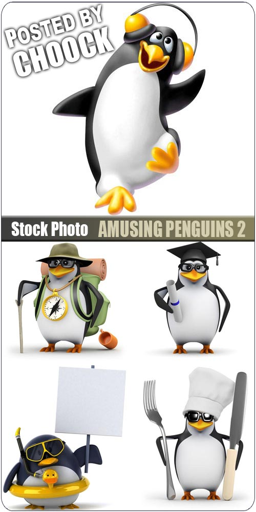 Amusing penguins 2 - Stock Photo