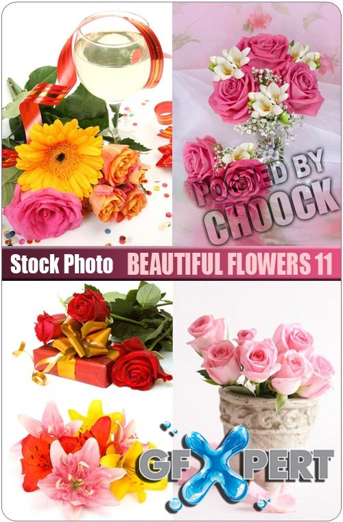 Beautiful flowers 11 - Stock Photo