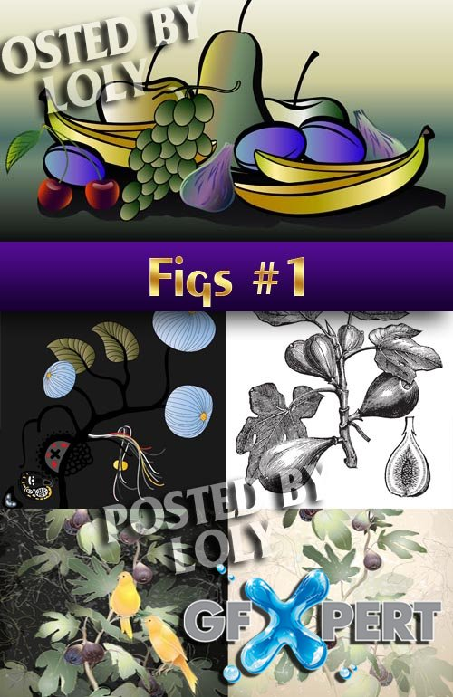 Figs # 1 - Stock Vector