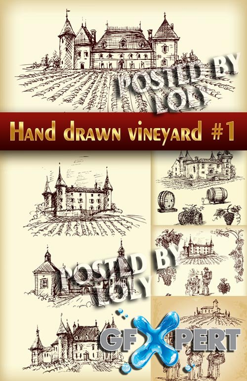 Hand drawn vineyard #1 - Stock Vector