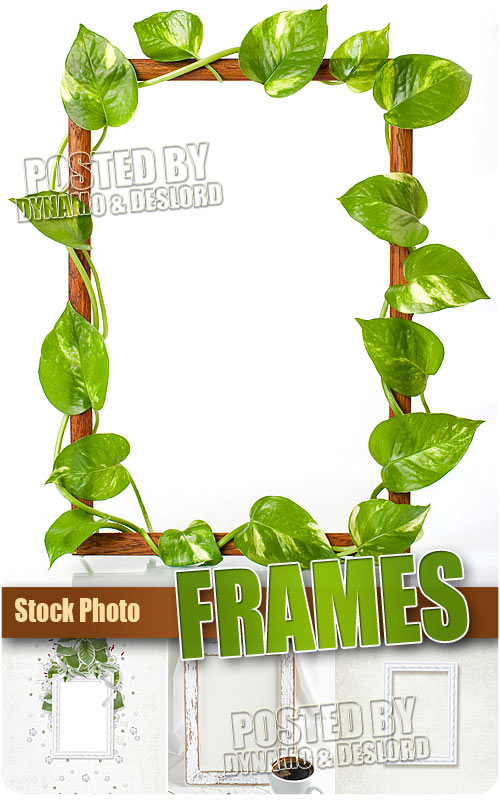 Delicate Frames - UHQ Stock Photo