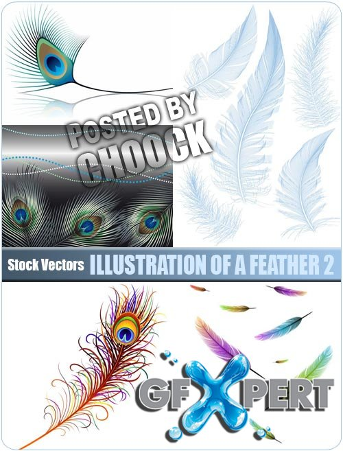 Illustration of a feather 2 - Stock Vector