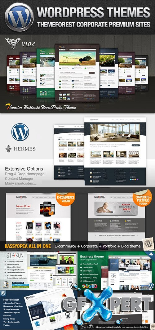 ThemeForest Corporate & Portfolio Premium Wordpress Themes 2013