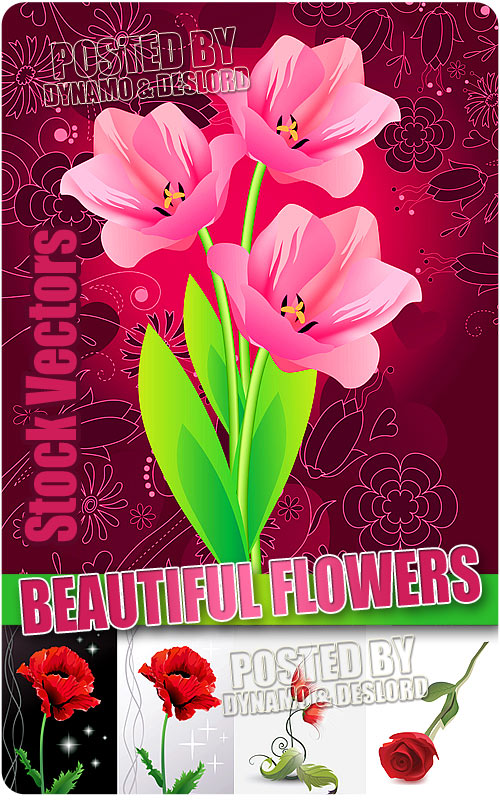 Beautiful flowers - Stock Vectors