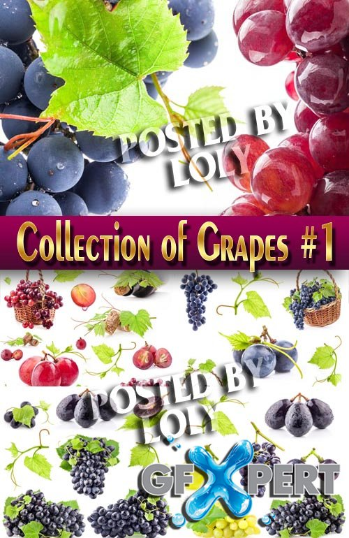 Food. Mega Collection. Grapes #1 - Stock Photo