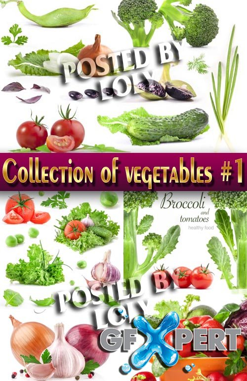 Food. Mega Collection. Vegetables #1 - Stock Photo