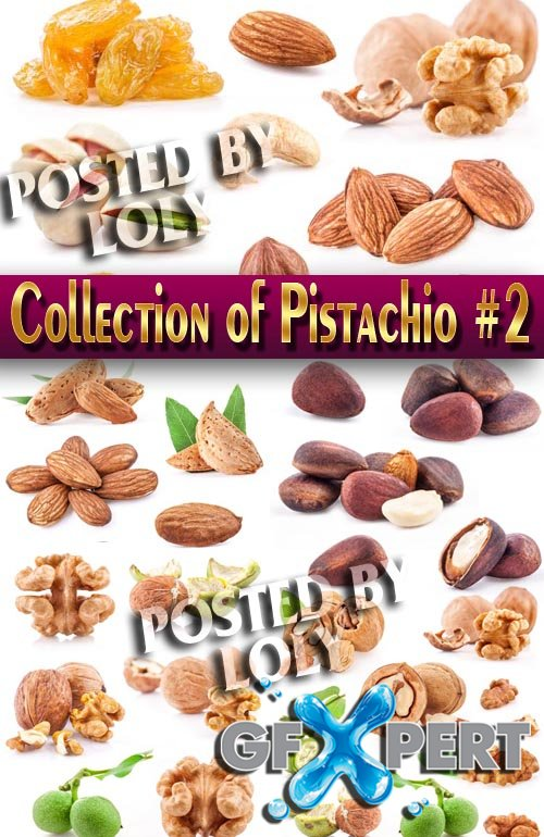 Food. Mega Collection. Nuts #2 - Stock Photo