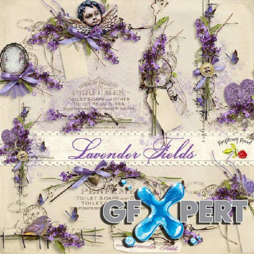 Scrapbooking kit - Lavender Fields