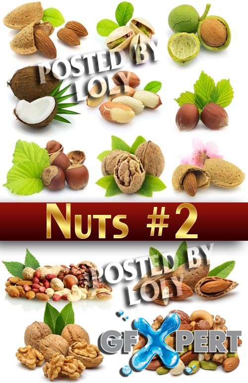 Nuts #2 - Stock Photo