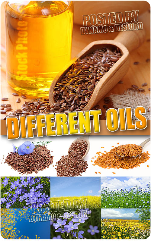 Different Oils - UHQ Stock Photo