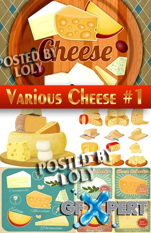Sorts of cheese #1 - Stock Vector