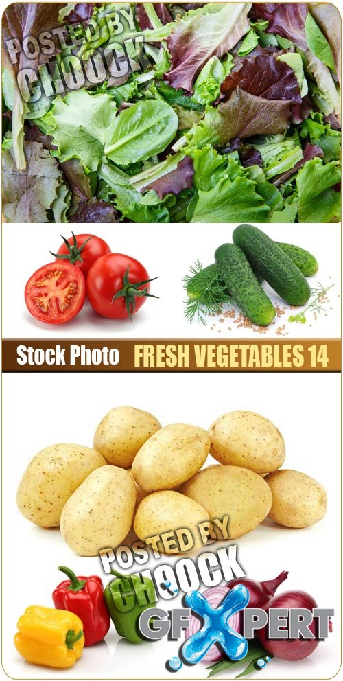 Fresh vegetables 14 - Stock Photo