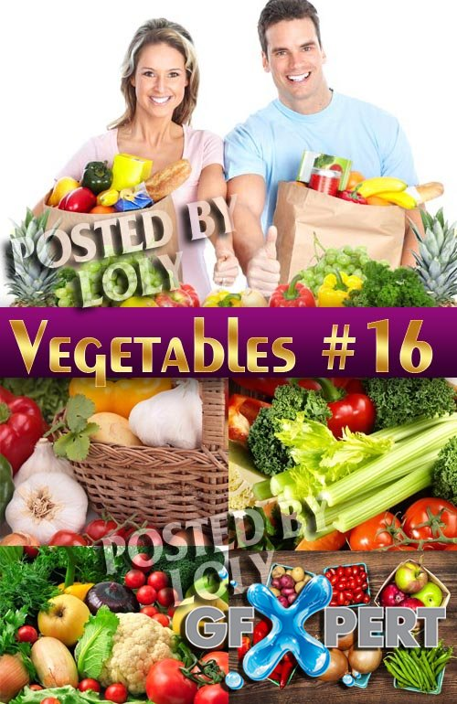 Fresh vegetables #16 - Stock Photo