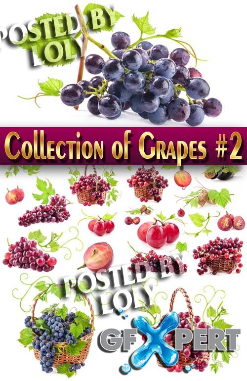 Food. Mega Collection. Grapes #3 - Stock Photo