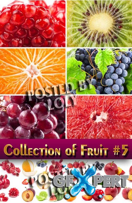 Food. Mega Collection. Fruit #5 - Stock Photo