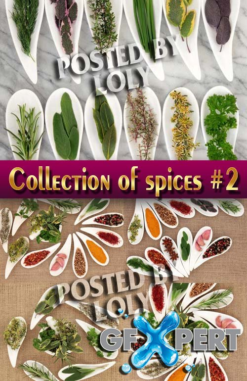 Food. Mega Collection. Spices #2 - Stock Photo