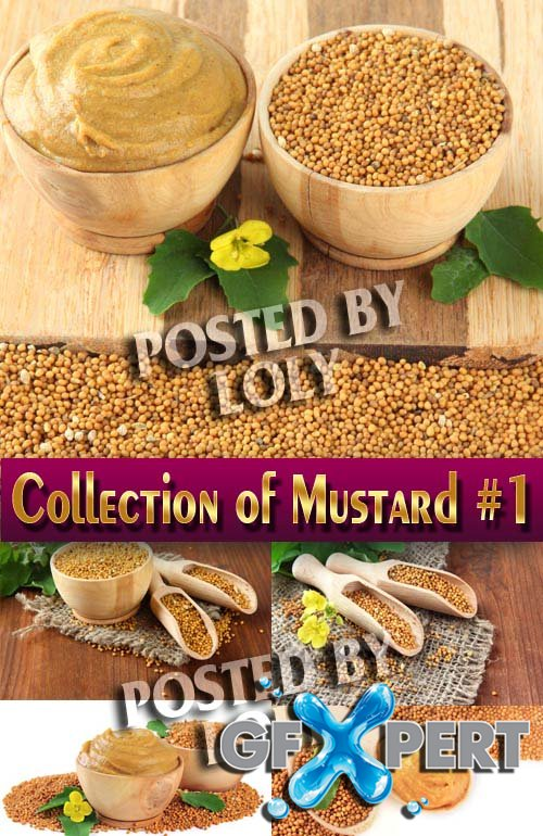 Food. Mega Collection. Mustard #1 - Stock Photo