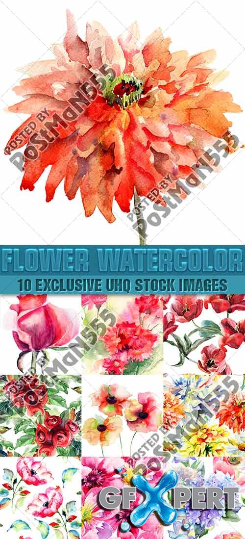 Beautiful watercolor seamless patterns of flowers - PhotoStock