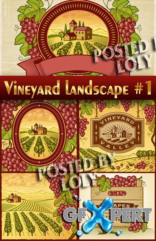 Vineyards landscape #1 - Stock Vector