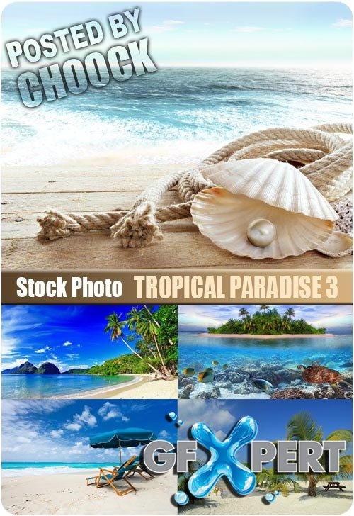 Tropical paradise 3 - Stock Photo