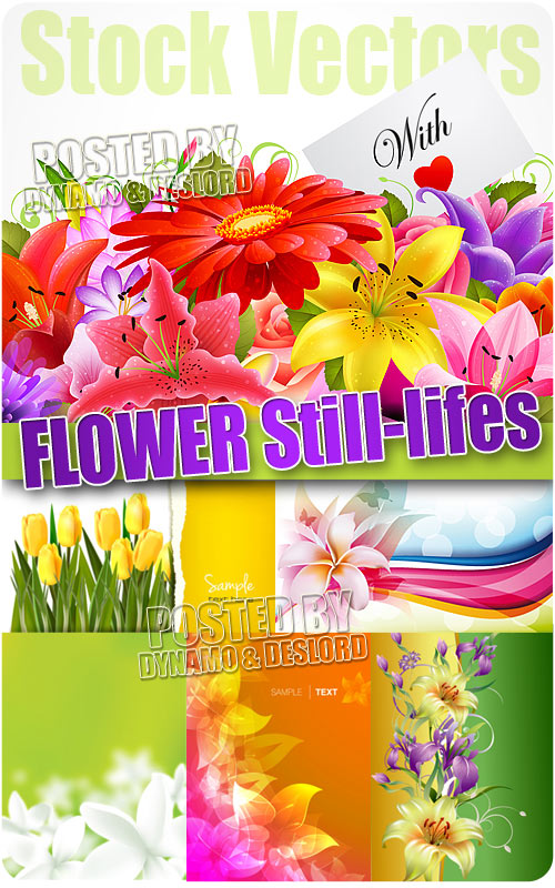 Flowers Still-lifes - Stock Vectors