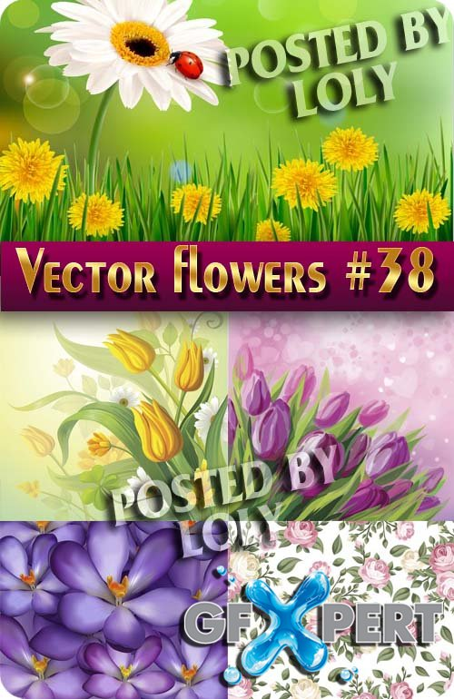 Vector Flowers #38 - Stock Vector