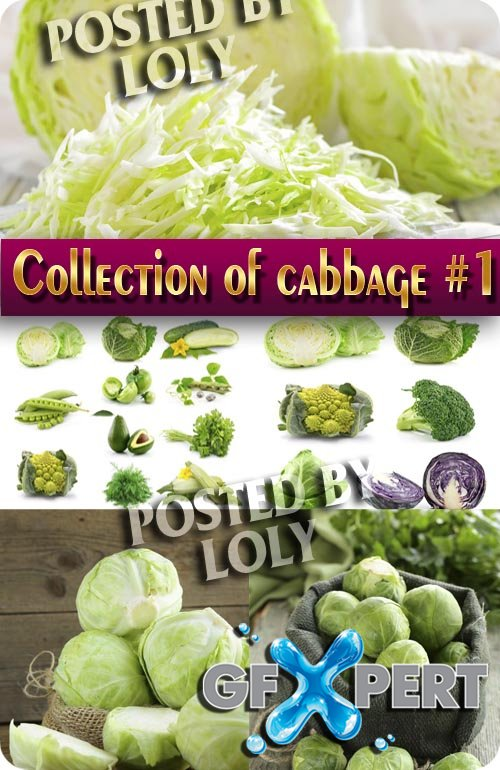 Food. Mega Collection. Cabbage #1 - Stock Photo