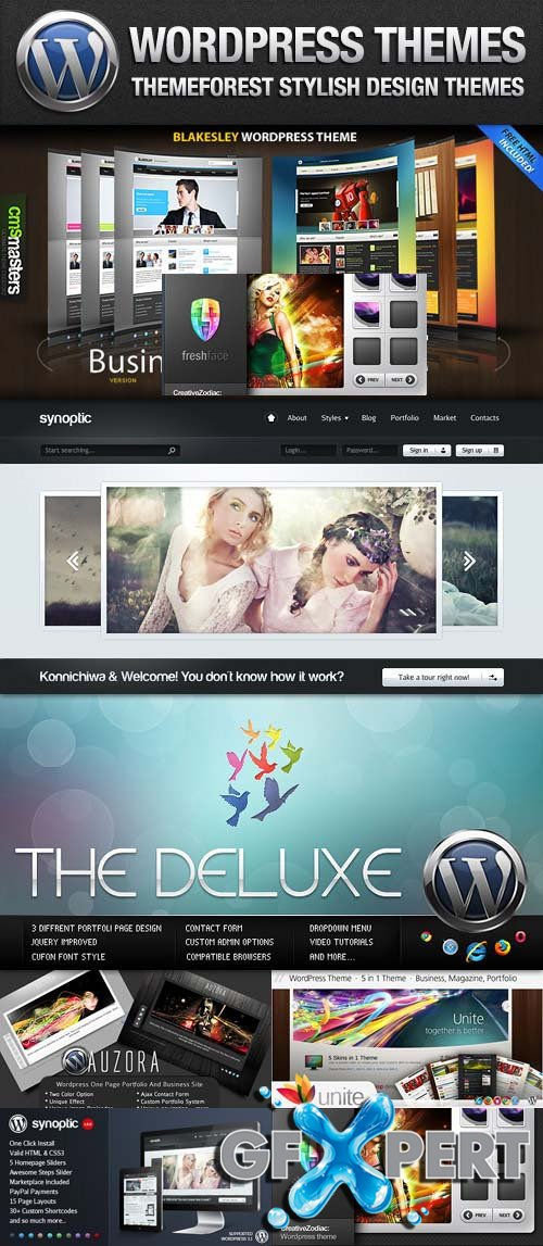 ThemeForest Stylish Design WordPress Themes