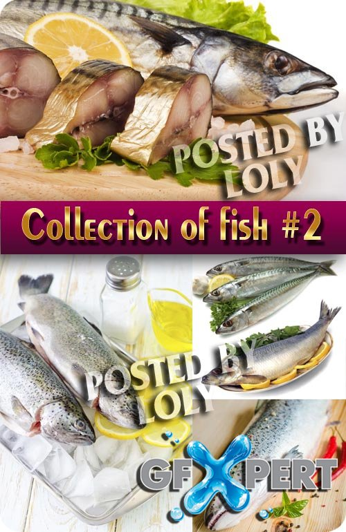 Food. Mega Collection. Fish #2 - Stock Photo