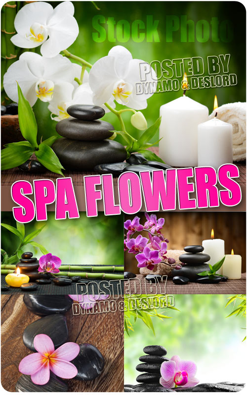 Spa flowers - UHQ Stock Photo