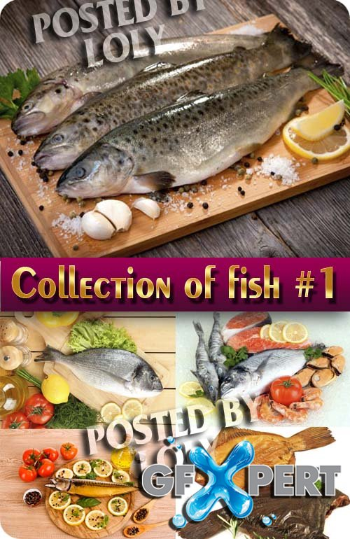 Food. Mega Collection. Fish #1 - Stock Photo