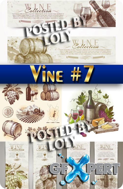 Hand drawn vineyard #7 - Stock Vector