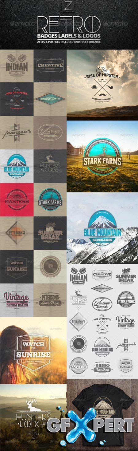 GraphicRiver Retro Badges, Labels & Logos 7396360