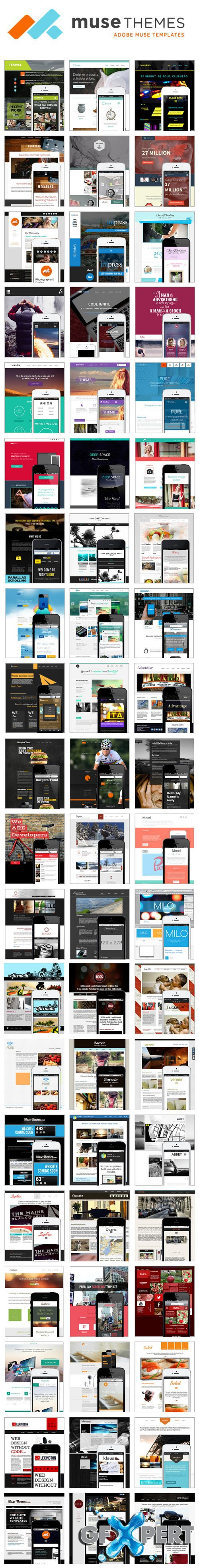 Musethemes - 40 Premium Web Templates Collection