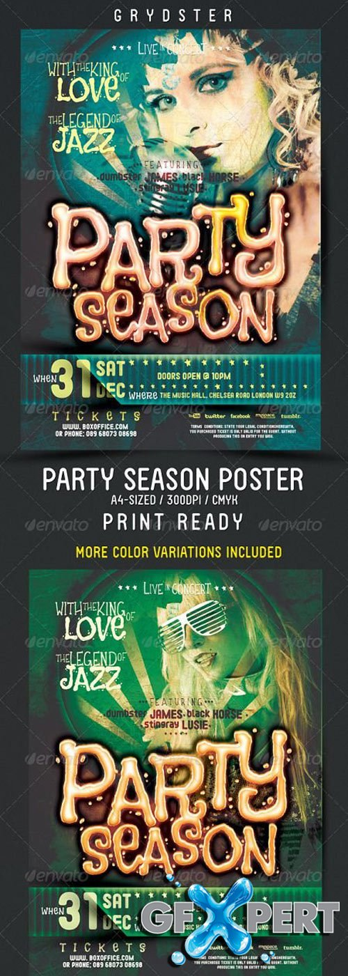 Party Season Flyer - Poster