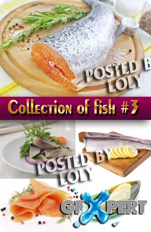 Food. Mega Collection. Fish #3 - Stock Photo