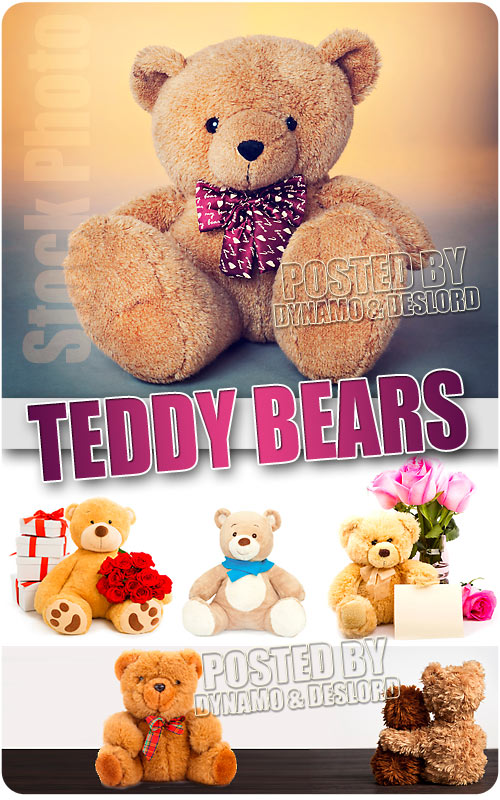 Teddy bears - UHQ Stock Photo