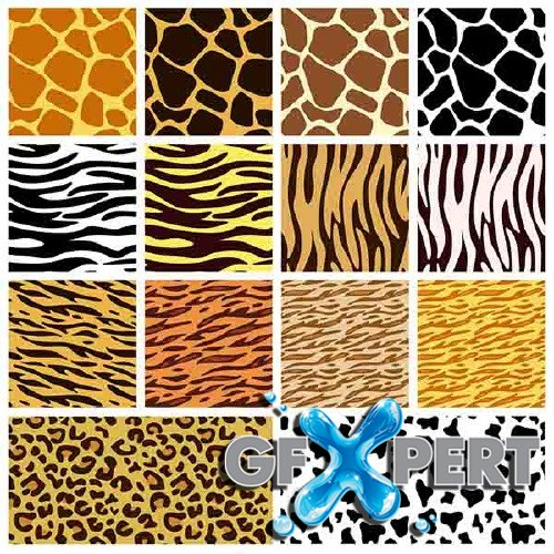 Vector set of animals skin patterns