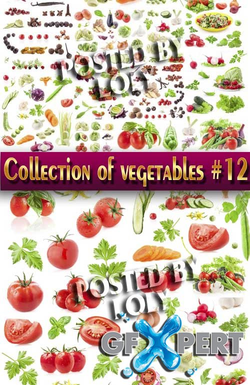 Food. Mega Collection. Vegetables #12 - Stock Photo